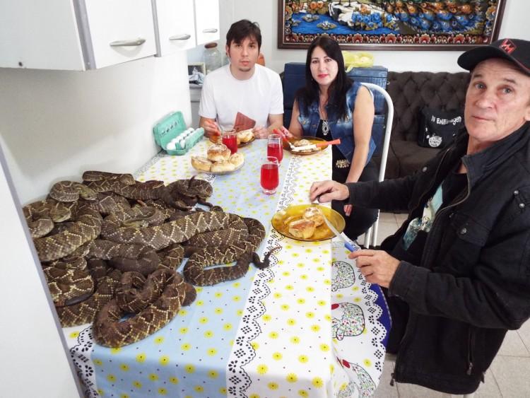 Dirley Bortolanza, 52, com o filho e a mulher no café da manhã, acompanhado das cobras que captura - Foto: Airton Donizete/Folhapress